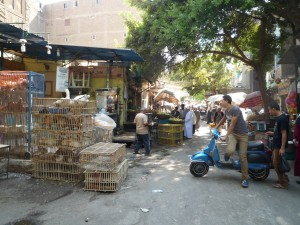 Busy street life in Cairo
