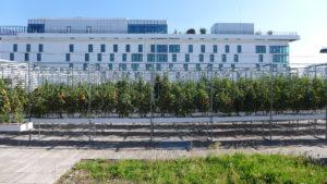 Urban farm Porte de Versailles in Paris