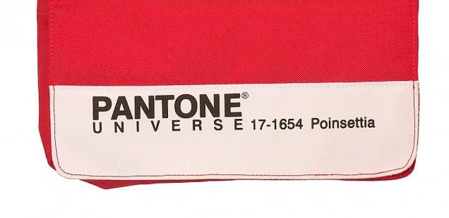 Pantone Record Bag